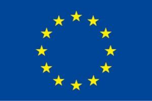 eu_zaszlo